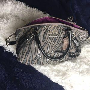 Zebra Print Coach Bag